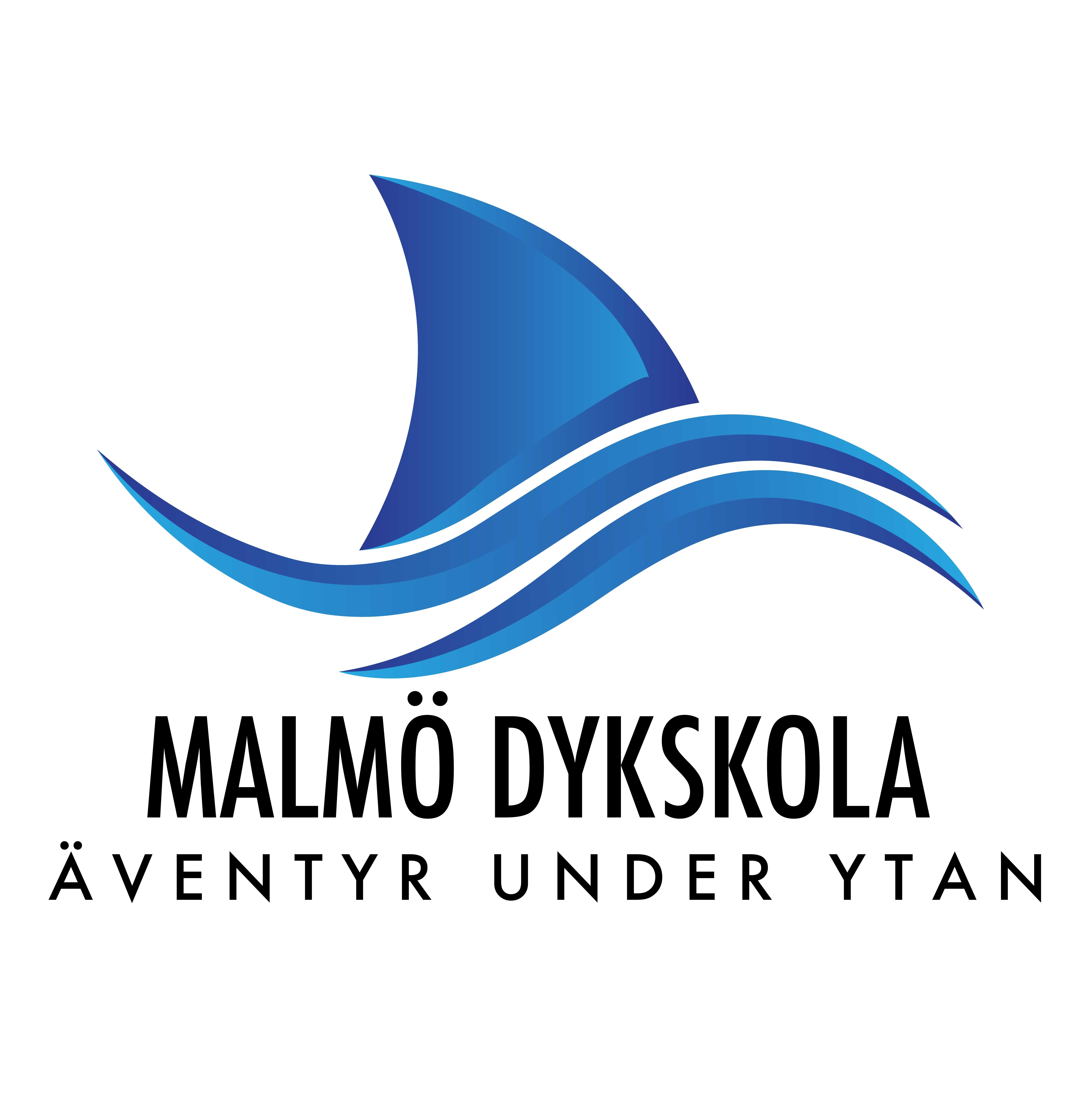 Malmö Dykskola infoträff