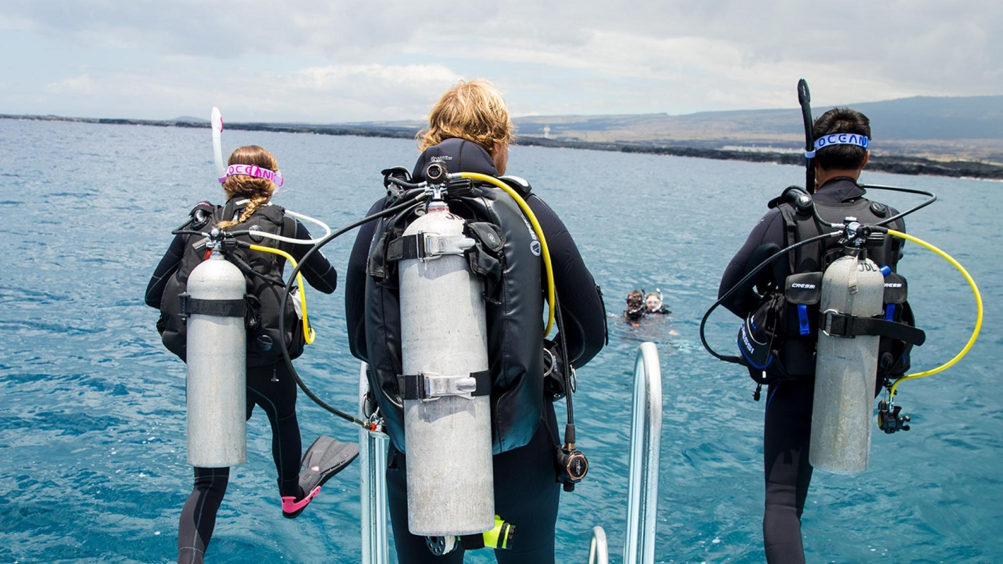 Read more about the article PADI ReActivate